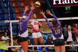 erica wilson cignal hd spikers